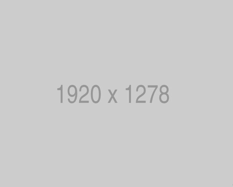 bizsees-960x720